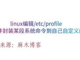linux编辑/etc/profile文件封装某段系统命令到自己自定义的字母