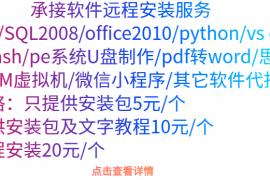 软件远程安装服务